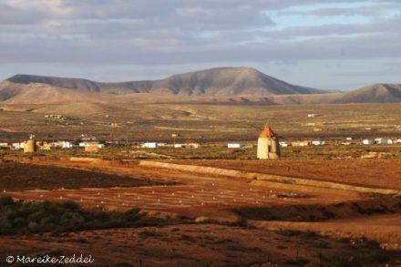 Landschaft Fuerteventuras mit Windmühlen