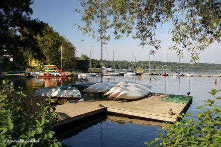 Ruderboote und Boote am See in Ratzeburg