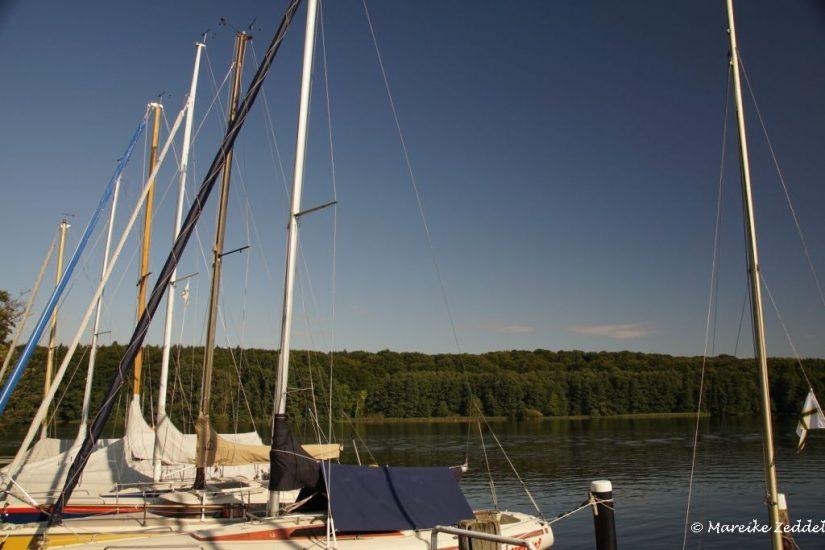 Segelboote am Ufer des Domsees Ratzeburg