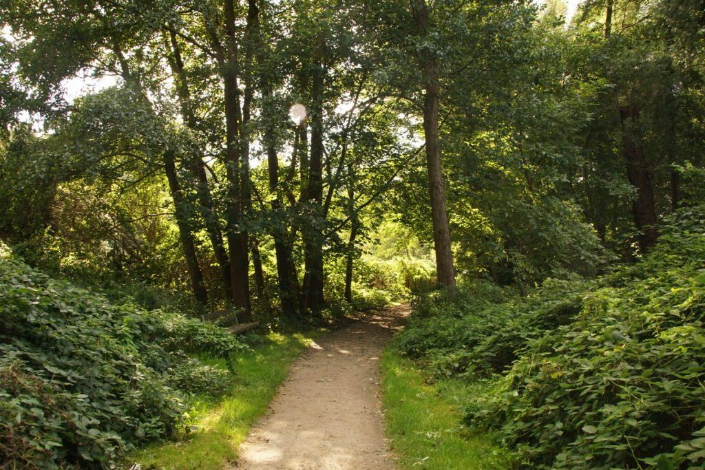 Spazierweg Ratzeburg am Kleinen Küchensee