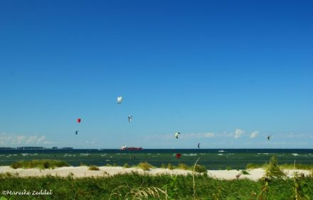 Kite Surfer am Strand von Laboe im Sommer