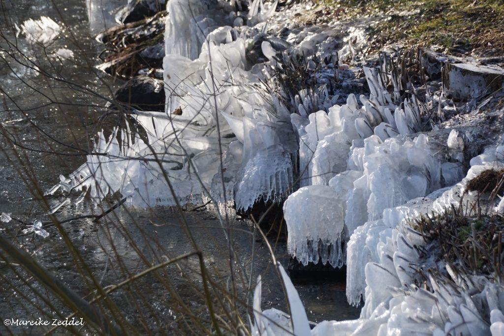 Gefrorenes Eis am Seeufer